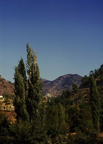 Agros, natural landscape at Agros village.