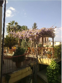 Lefkosia, Residence of Kostas Christodoulou, the roof garden.